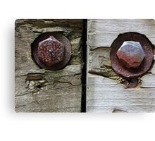 Bolts and Ant Canvas Print