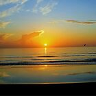 Sunrise at Flagler Beach, Florida by Suzi Harbison
