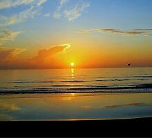 Sunrise at Flagler Beach, Florida by Suzi Harbison