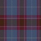 02907 Saginaw County, Michigan E-ffical Fashion Tartan Fabric Print Iphone Case by Detnecs2013