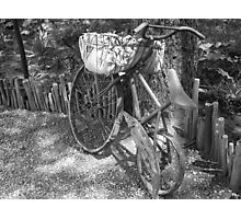 Bicycle Planter Photographic Print