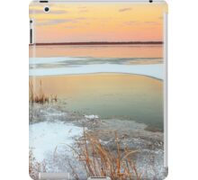 Lake Sunset Illinois iPad Case/Skin