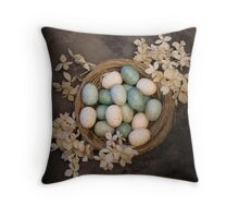 Spring Primative Nest Throw Pillow