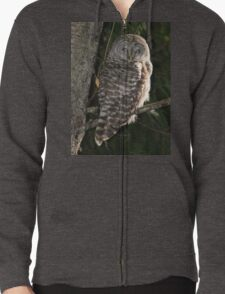 Barred Owl Forest Hike T-Shirt