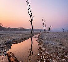 Silence of the dusk by saptak ganguly