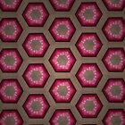 The Fuchsian Hexagonal by Jacob Gibney
