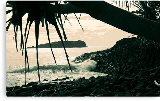 cook island dreaming ... by gail woodbury