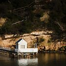 Jetty and White Shed by Mick Kupresanin