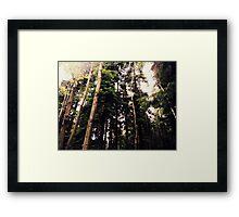 Green Giants Framed Print