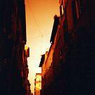 Blood Orange - Lomo  by chylng