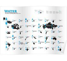 Virtual Water Footprint of Nations Poster
