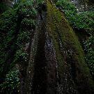 Nojoqui Falls 2 by HeavenOnEarth