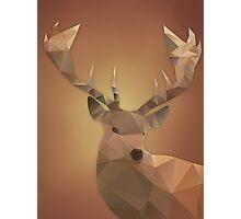 Polygon Deer Photographic Print
