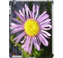 Magenta Aster - A Star of Love and Fidelity iPad Case/Skin