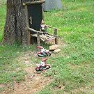 Biker Gnome Invasion by JRGarland