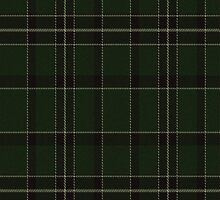 02909 Broome County, New York E-fficial Fashion Tartan Fabric Print Iphone Case by Detnecs2013