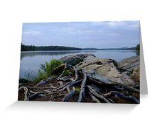 Smoke Lake Shoreline- Algonquin Park Canada Greeting Card
