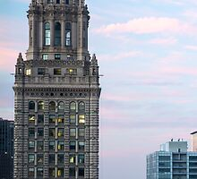 Classic Architecture, Chicago Skyline - Chicago Ill. by Mike Koenig