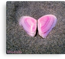 Pink Butterfly Made of Seashells  Canvas Print