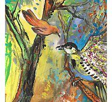 Birds 03 Photographic Print