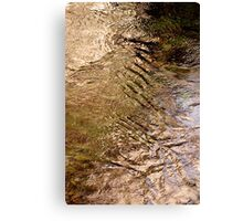 Water .. Canvas Print