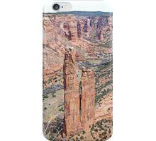 Spider Rock iPhone Case/Skin