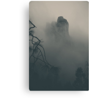 I Can Barely Remember Canvas Print