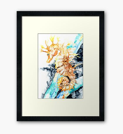 Dreaming Of A Seahorse  Framed Print