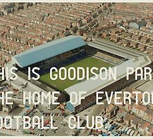 Everton Football Club by Jim Roberts