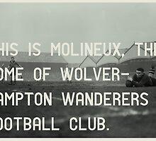 Woverhampton Wanderers Football Club by homework