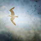 Flight by Anne  McGinn