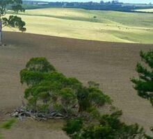 *Pentland Hills taken from Moving Car - Myrniong, Vic. Australia* Sticker