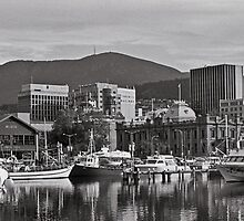 Autumn, Victoria Dock, Hobart by Brett Rogers