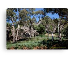 Solidified Magma, Hanging Rock, Victoria Australia Canvas Print