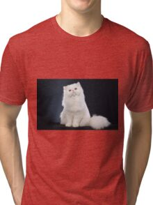 Cute cat Tri-blend T-Shirt