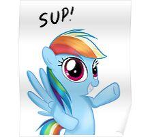 Sup! - Rainbow Dash Poster