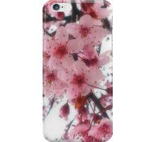 Peach flowers in the rain iPhone Case/Skin
