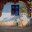 Blue Window Chiang Mai by Duane Bigsby