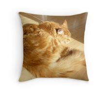 Sun Beamed Throw Pillow