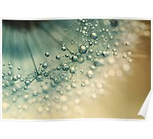 Sea Green Sparkles Poster