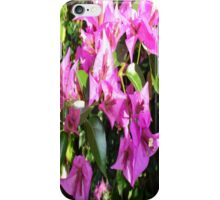 Purple Pink Bougainvillia In Blossom  iPhone Case/Skin