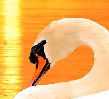 ARCH NECK MUTE SWAN GOLD LIGHT by Randy & Kay Branham