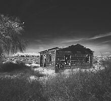 abandoned life by Paula Burgoon
