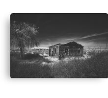 abandoned life Canvas Print
