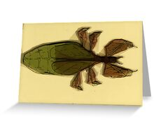 Insect Print 6 Greeting Card