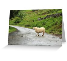 Everybody loves a sheep in the road. Greeting Card
