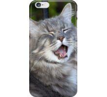 Schmitty's iPhone iPhone Case/Skin