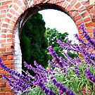 Lavender Arch by Natasha M
