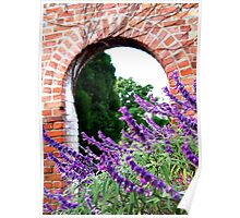 Lavender Arch Poster