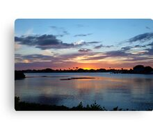 Fighting the blues Canvas Print
